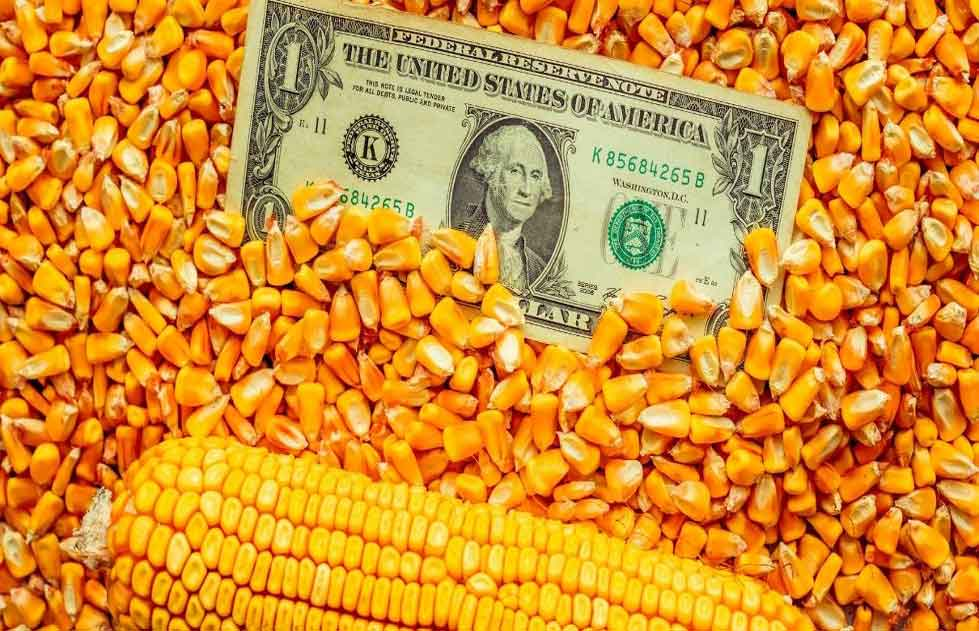Agricultural commodities - USD vs grains